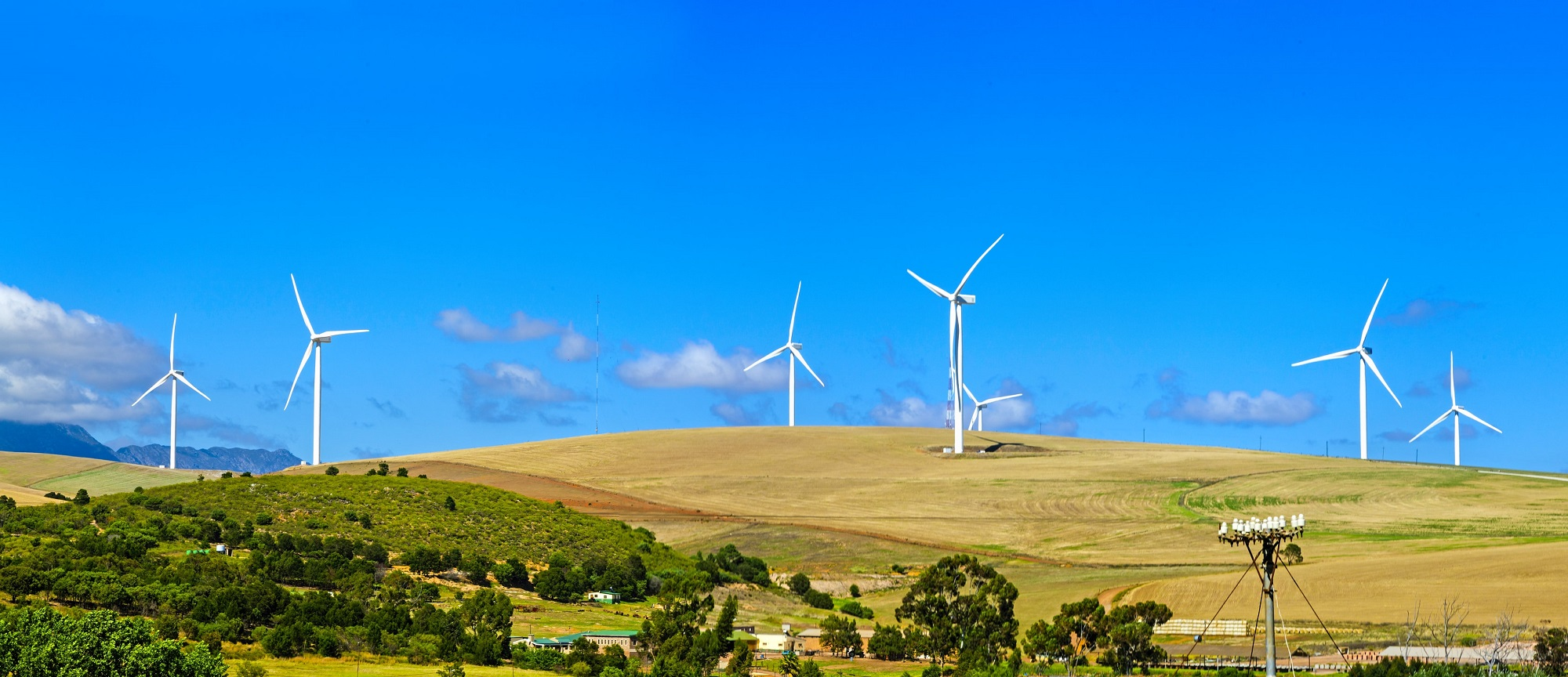 field with wind turbines. Renewable energy companies can showcase their green energy services through NEO Network